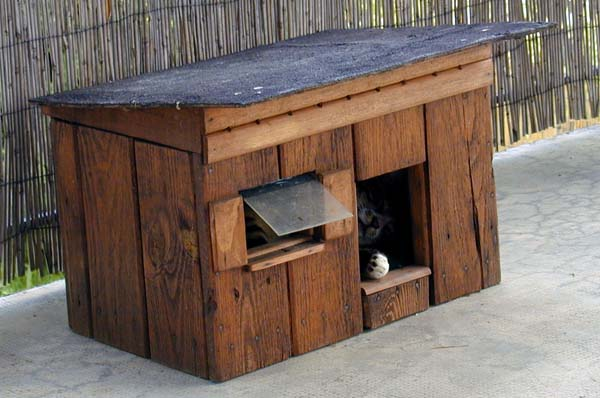 diy cr er une cabane pour chat en bois en 7 tapes. Black Bedroom Furniture Sets. Home Design Ideas