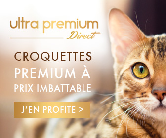 Croquettes ultra premium direct
